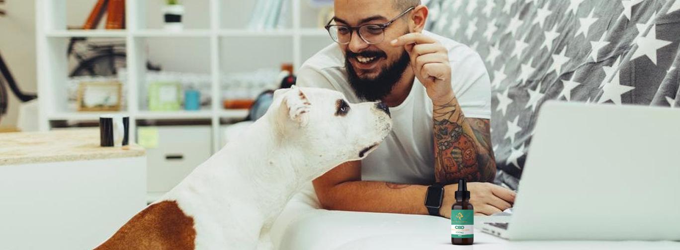 CBD Pet Tincture Oil - Retail & Wholesale CBD Products