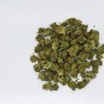 Bulk CBD Flower for Sale - Casco Bay Hemp Retail, Wholesale & Private/White Label CBD Services in Maine