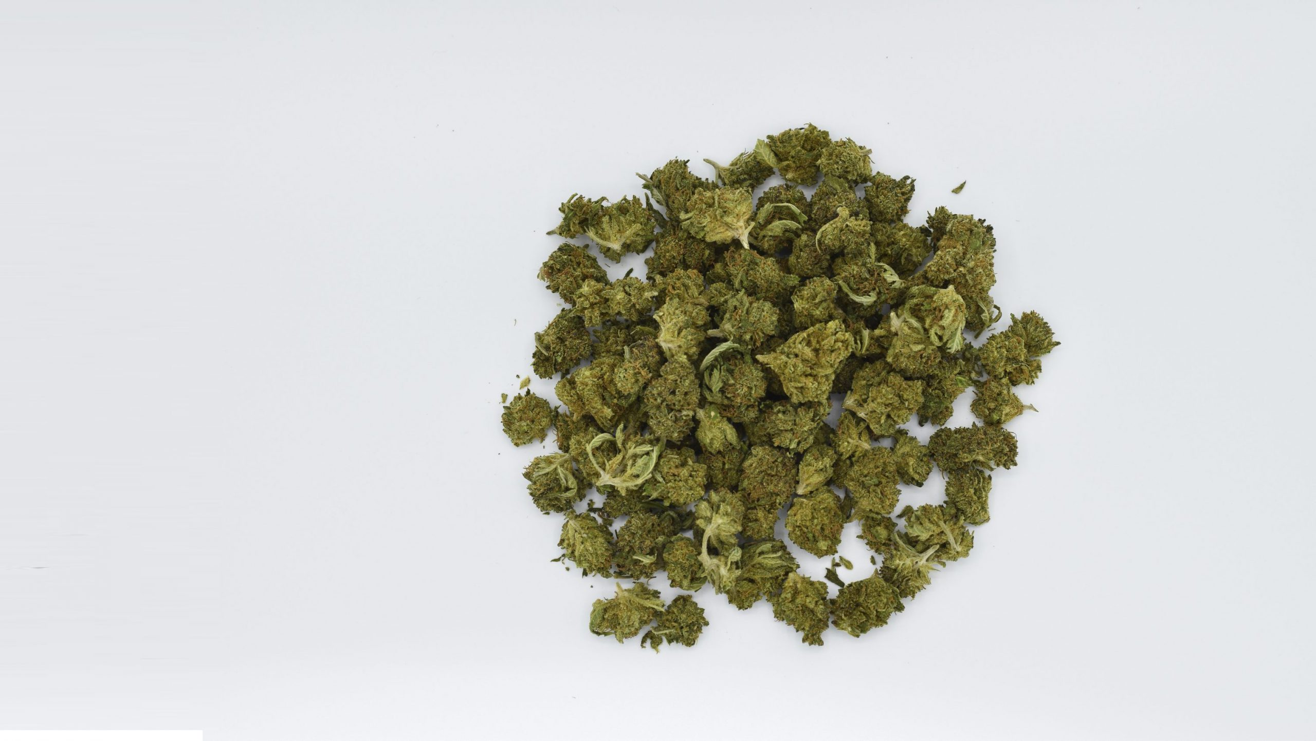 Bulk CBD Flower for Sale - Casco Bay Hemp Retail, Wholesale & Private/White Label CBD Services in Maine