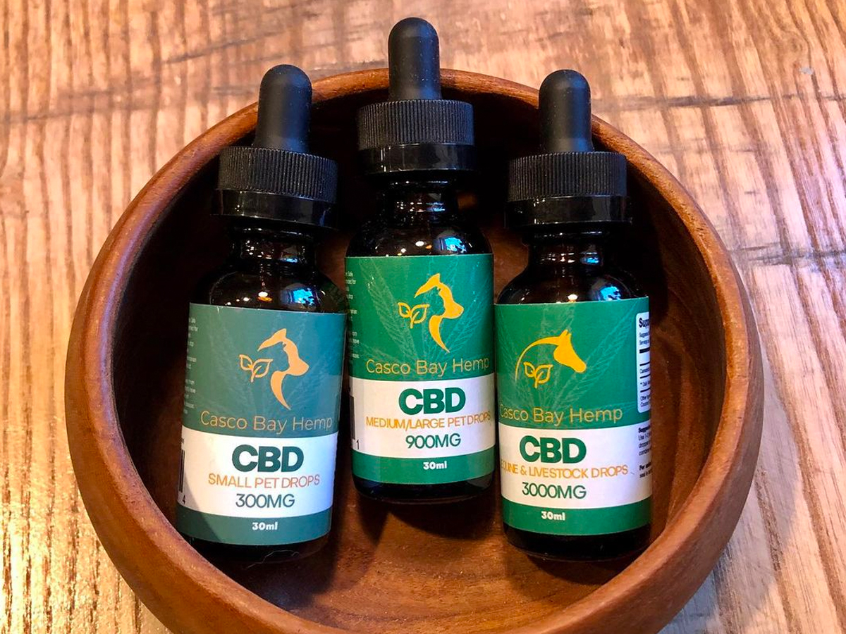 CBD For Pets - A Tale of Two Tails