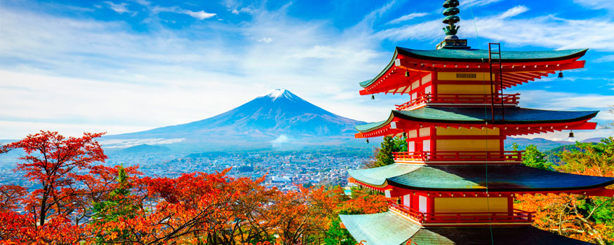 Now Accepting Private Label CBD Clients & Partners From Japan