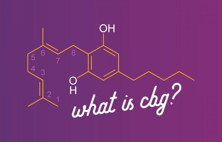 What is CBG? | Hemp Manufacturing | Retail, Wholesale, White Label